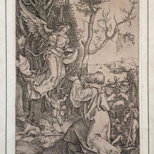 Un angelo appare a Gioacchino. Vita della Vergine - Raimondi da Dürer Albrecht