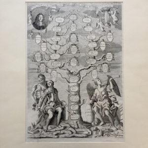 Albero genealogico della famiglia Corner - Coronelli Vincenzo